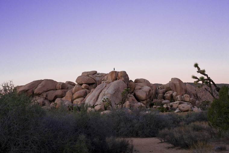 hiker on top of a joshua tree mountain raw file edited